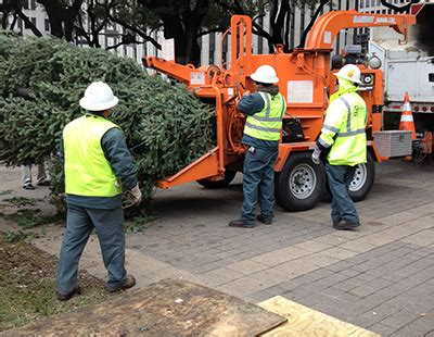 houston promotes christmas tree recycling at 18 locations