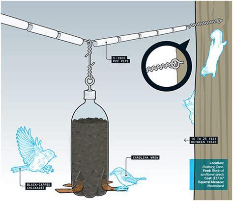 squirrel proof bird feeder plans feedingnature