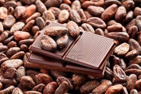 The Cocoa Cocoa Profits That Melt In Your