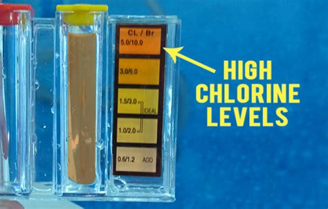 Chlorine Levels chlorine levels swimming pool search engine at