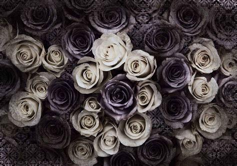 wallpaper grey roses high quality wallpaper murals homewallmurals shop