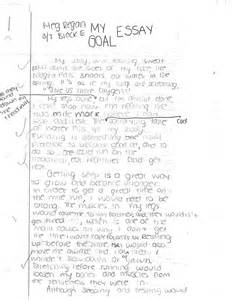 Term Goals Essay by Personal Goal Essay