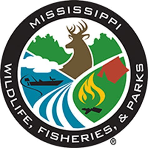 ms wildlife and fisheries boat registration ms wildlife fisheries parks