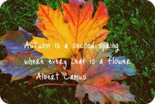 fall funny quotes quotesgram