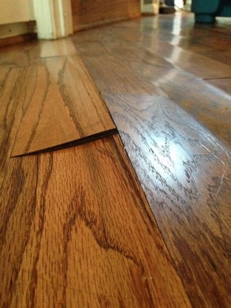 Hardwood Floor Buckling How Humidity Affects Your Hardwood Flooring Angie S List