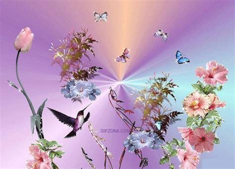 1470978512 la vie dans la couleur mettez de la couleur dans votre vie gif flowers