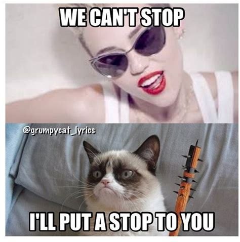 Angry Cat Meme No - grumpy cat sings with miley cyrus grumpy cat pinterest