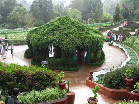 Government Botanical Gardens Ooty What Time Does Botanical Gardens