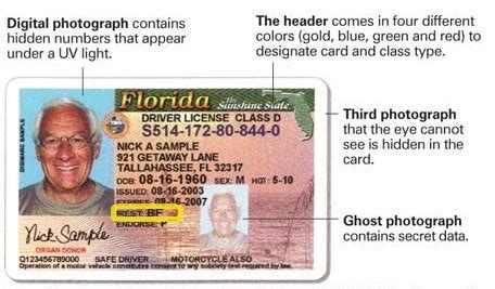 drivers license hendry county tax collector fl driver s permit age life style by modernstork com