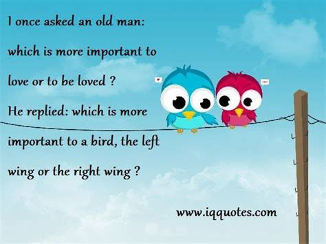 quotes about love and birds quotesgram love bird quotes love bird quote love bird quotations