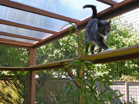 cat patio catio spaces diy catio plans and cat enclosures