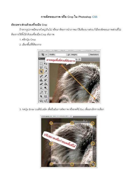 reset crop tool photoshop crop tool photoshop cs5