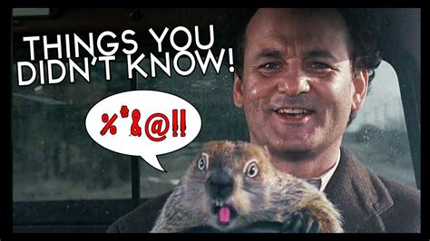 groundhog day repeat 7 groundhog day facts to repeat