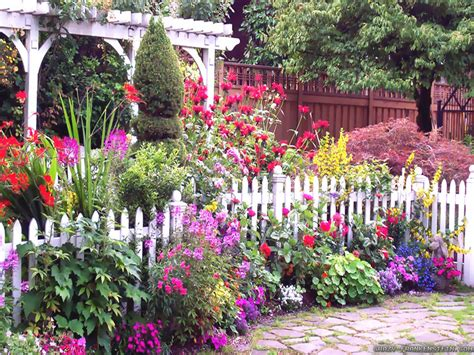 Best Garden Flowers Best Garden Flowers For Color All Summer Acegardener