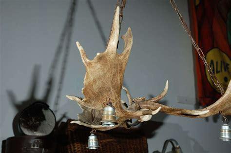 Elk Horn Chandelier Sale Elk Horn Three Light Chandelier For Sale At 1stdibs