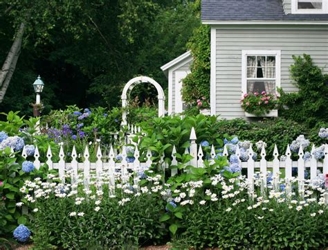 which side of house is my fence 35 hydrangea garden ideas pictures