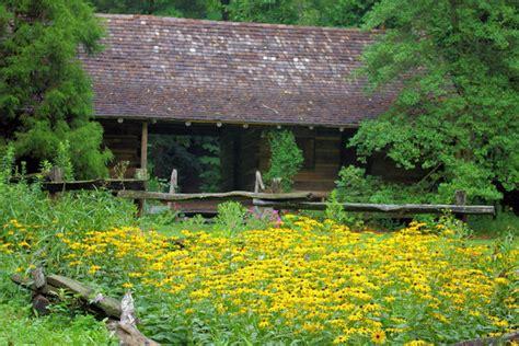 Botanical Gardens Asheville Botanical Gardens Of Asheville