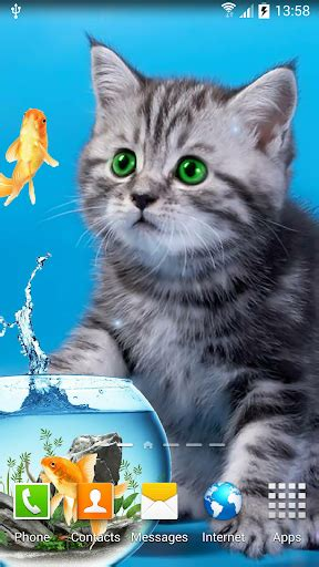 cat live wallpaper for pc download cat live wallpaper for pc