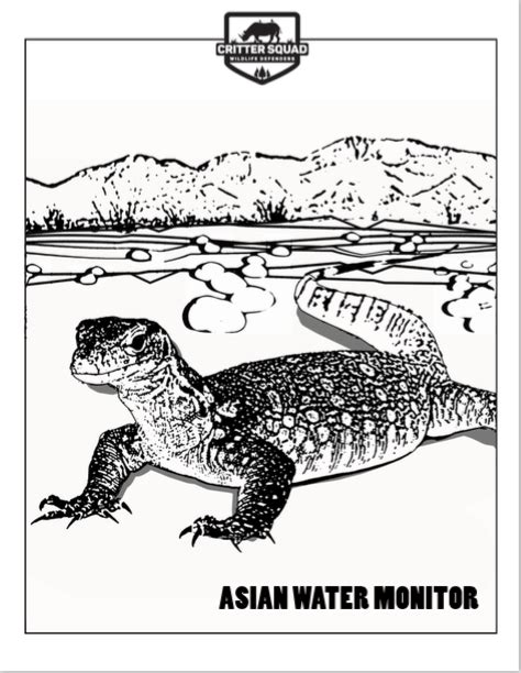 water monitor coloring page monitor lizards critter squad wildlife defenders