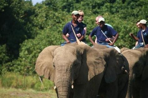 by touringrider published february 10 2011 full size is 720 riding 10 adventures africa african safari and