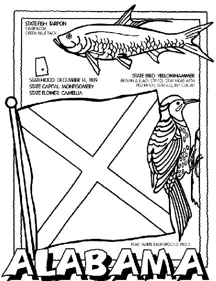 coloring pages of united states symbols united states state symbols printables for pa history