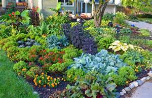 6 tips for a more sustainable garden and yard fresh