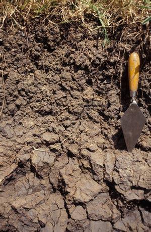 terragis soil