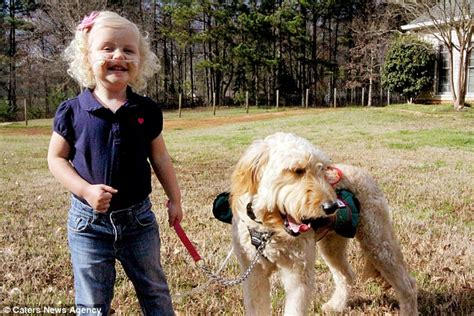 oxygen tank for dogs how mr gibbs the keeps keeps alida knobloch 3 alive by strapping oxygen tank to