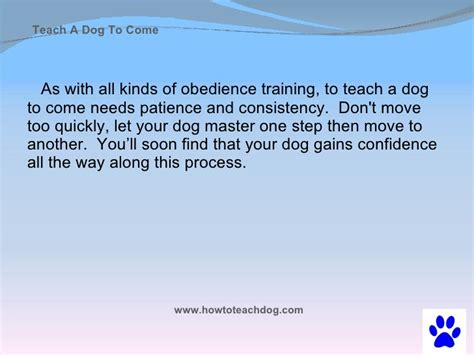 teaching a puppy to come teach a to come when called
