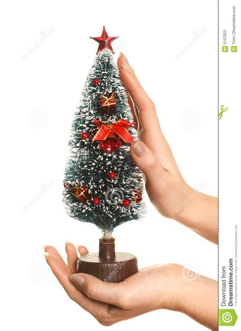 taking care of christmas tree stock photos image 5147023
