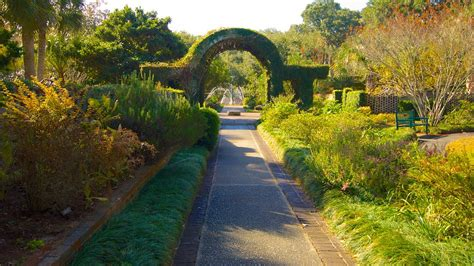 brookgreen gardens in myrtle south carolina expedia