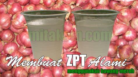 cara membuat pupuk zpt dari bawang merah zpt organik cara sederhana dan mudah membuat zpt organik