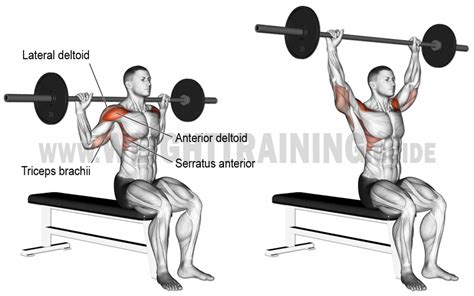 bench press to neck behind the neck barbell overhead press exercise