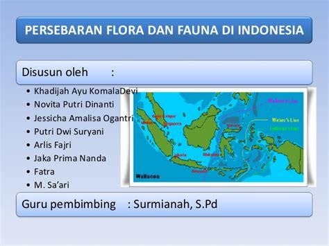 flora dan fauna indonesia penyebaran flora dan fauna di indonesia