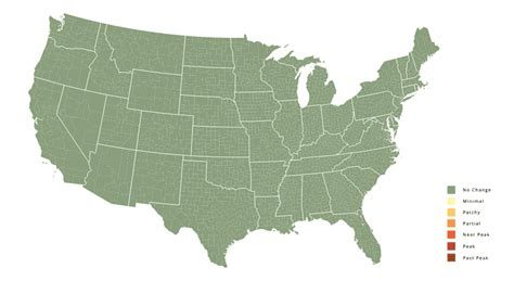 america map gif this map tells you exactly when the trees near you will