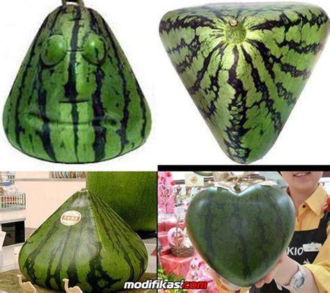 Garpu Buah Bentuk Hati T011160 ini rahasia bentuk buah semangka kotak hingga bentuk hati