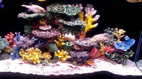 aquarium coral decoration aquarium coral reef decor aquarium design ideas