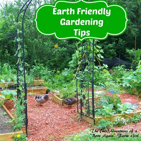 190 best images about garden on pinterest