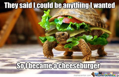Meme Burger - cheeseburger memes best collection of funny cheeseburger