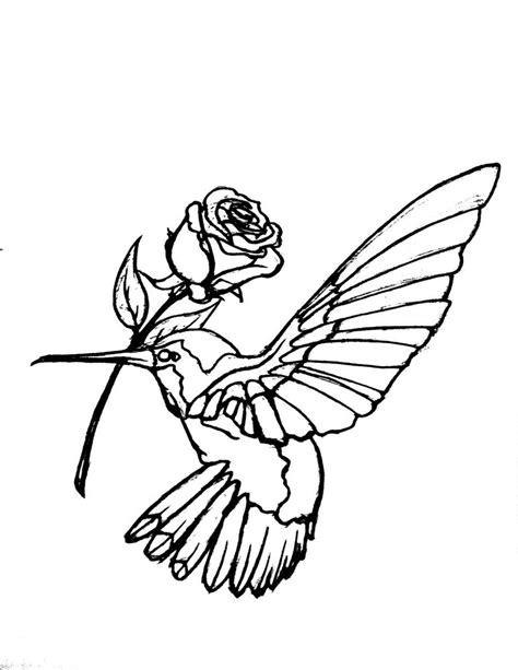 outline bird tattoo designs hummingbird tattoos designs ideas and meaning tattoos