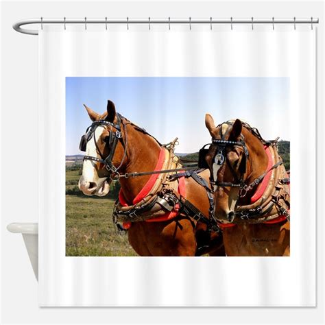 equestrian shower curtain belgian horse shower curtains belgian horse fabric