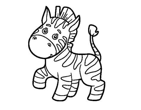 imagenes de cebras para dibujar faciles dibujo de una cebra africana para colorear dibujos net