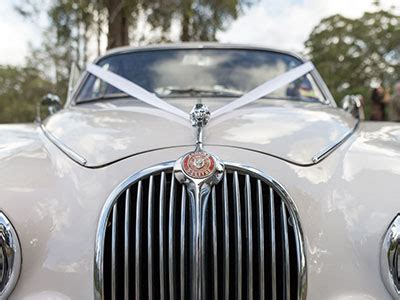 Wedding Car Licence Qld by Wedding Cars Coast The Range Wedding Cars