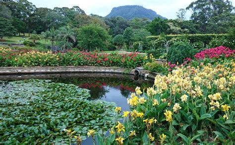 Wollongong Botanic Garden Letters Illawarra Mercury