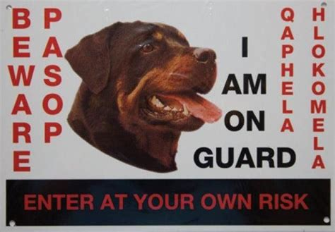 beware of rottweiler sign marltons beware of the sign rottweiler buy in south africa takealot