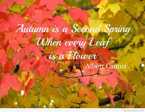 First Day Of Fall 2015 Quotes 21 Famous Sayings About | first day of spring quotes wallpapers and flowers photos