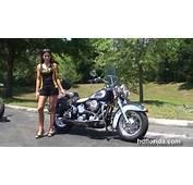 1999 Harley Davidson FLSTC Heritage Softail Classic Pics
