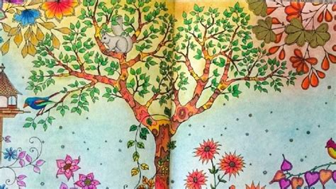 secret garden colouring book qbd 13 best ideas about coloring pages on johanna