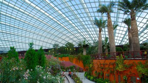 Garden Of Singapore Gardens By The Bay In Singapore Expedia