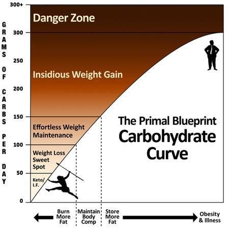 150g carbohydrates carb counting optimising nutrition
